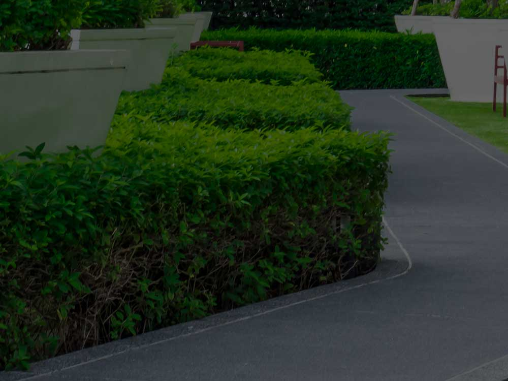 Lynnfield Commercial Landscaping